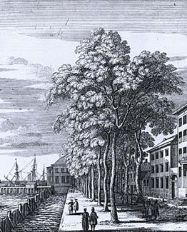 Boompjes anno 1700, Petrus Schenk