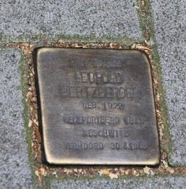 hertzbergerleopoldstolper