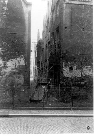 kikkersteeganno1935rotterdam